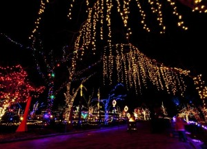 The Best Things To Do In Boise During Christmas