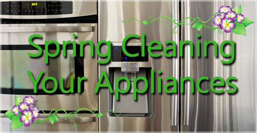 Spring Cleaning Your Appliances