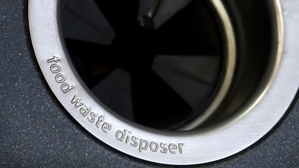 what can you put in your garbage disposal