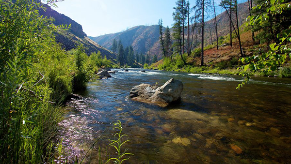 Awesome Fourth Of July Camping Ideas Boise