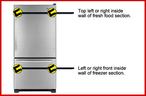 Bottom Freezer Fridge